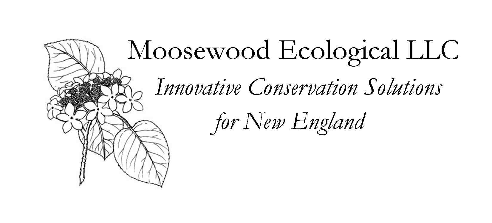 Moosewood Ecological
